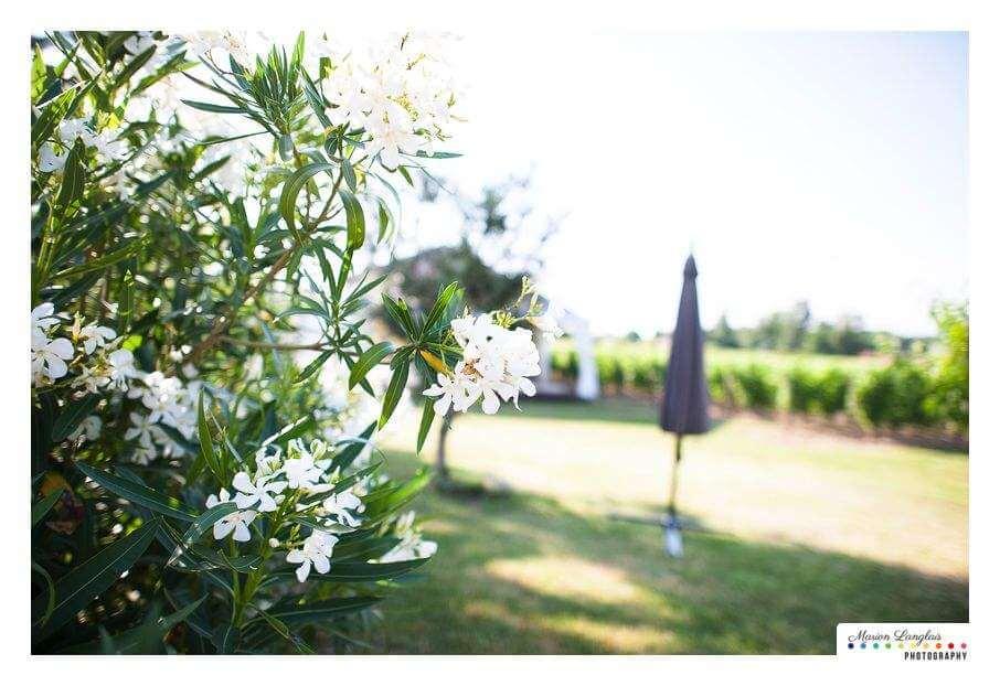 se-marier-au-milieu-des-vignes-dans-un-chateau-de-bordeaux-02