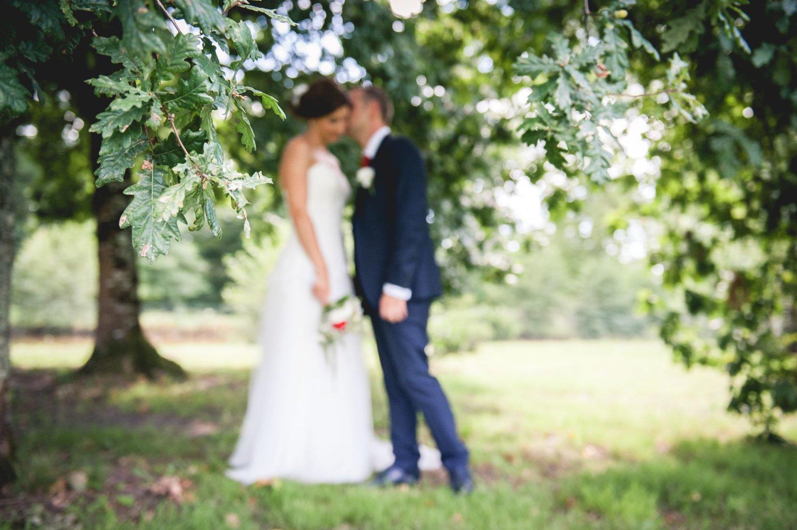 wedding day and beautiful love